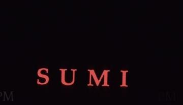 Sumi0003-e1403247960369-456x325